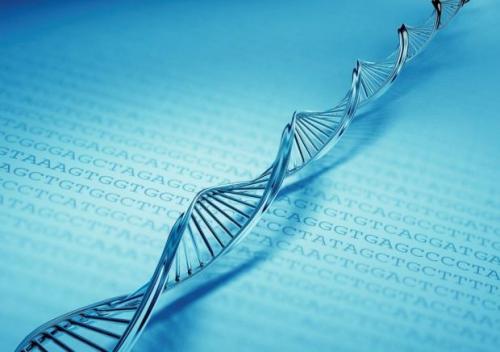2013科学仪器优秀新品入围名单:实验室常用设备、生命科学类